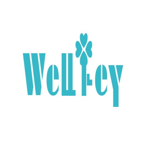 WELLKEY INDUSTRY COMPANY LIMITED